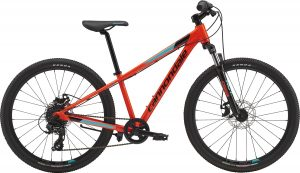 Kids Mountain Bike Rentals
